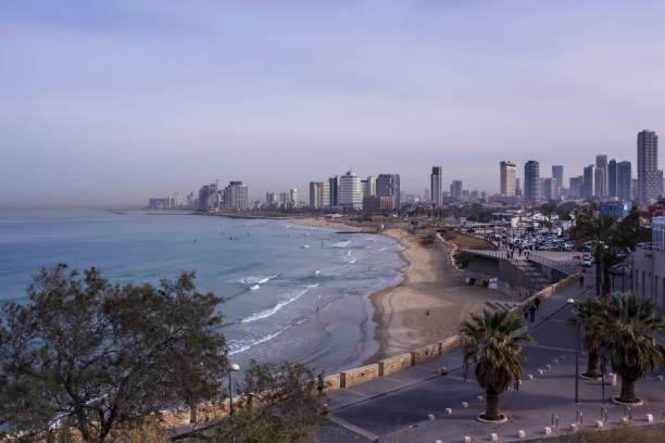 tel aviv beach und city skyline im lila morgennebel israel - wasserfledermaus stock-fotos und bilder
