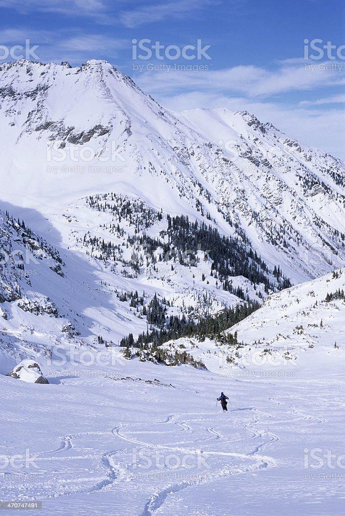 Telemark skier carves turns in Elk Mountains Colorado royalty-free stock photo