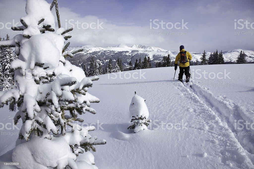 Telemark Skier in Vail Colorado Backcountry stock photo