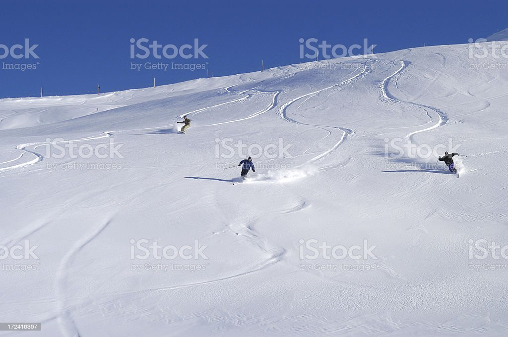 Gruppo telemarker in neve fresca royalty-free stock photo