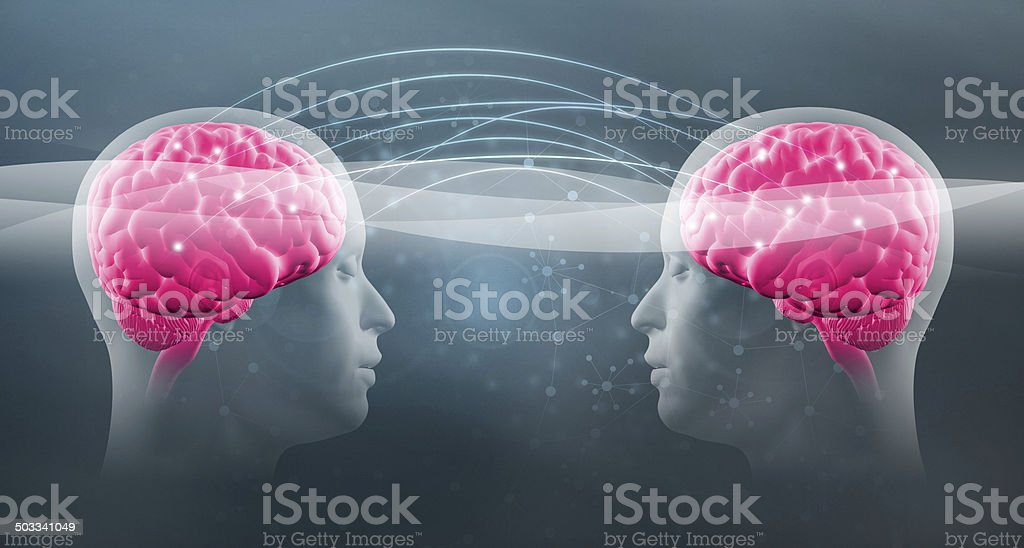 Telepathy: two human heads with visible brains connect together stock photo