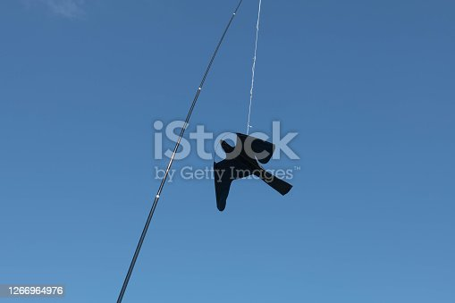Kite in the Shape of a Big Black Bird is Intended to Scare Away Smaller Birds who Might Eat the Produce in a Vegetable Garden
