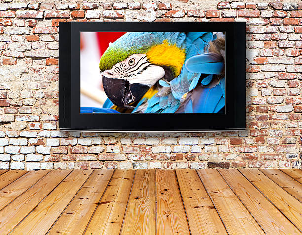 television set on an old wall interior with a television set on an old wall 4k resolution stock pictures, royalty-free photos & images