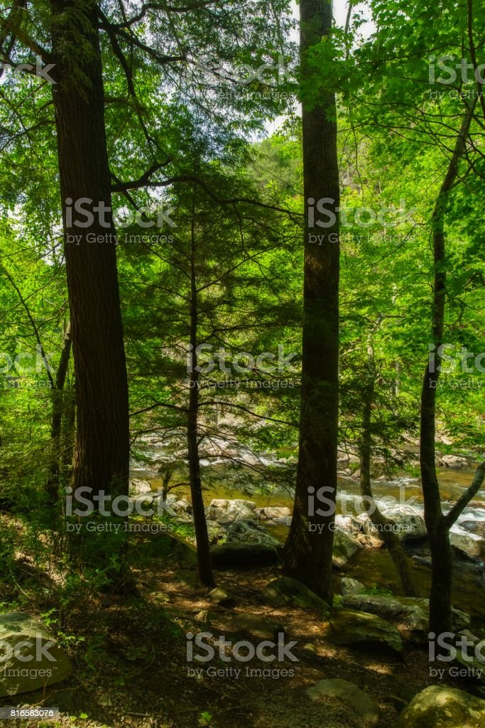 Tellico River, Cherokee NF stock photo