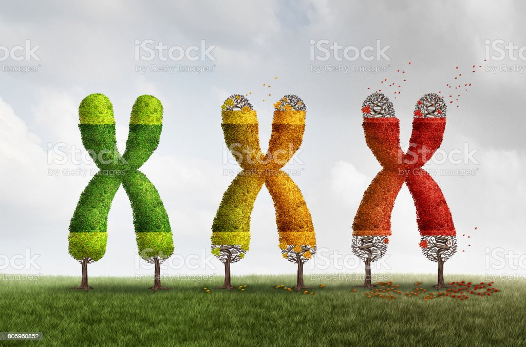 Telomere Loss Health Concept stock photo