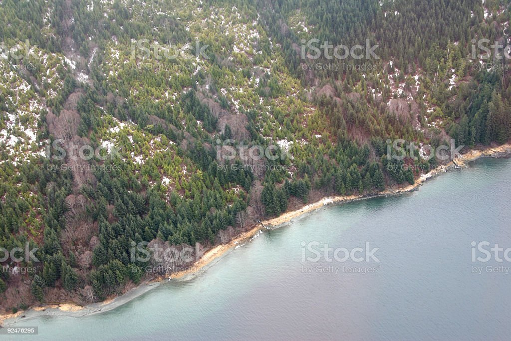 Temperate Rainforest Aerial royalty-free stock photo