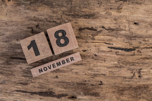 488008496 istock photo template for november 488009988