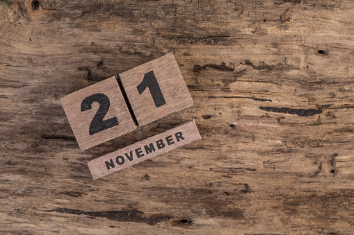 488008496 istock photo template for november 488010526