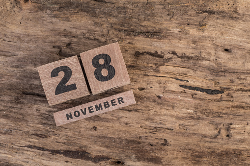 488008496 istock photo template for november 488012194