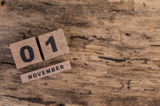 488008496 istock photo template for november 488051526