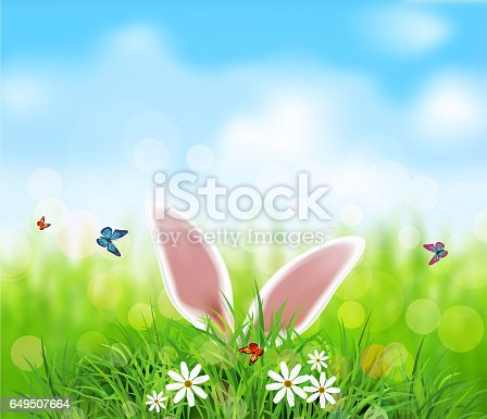 istock Template. Rabbit ears sticking out of the grass . 649507664