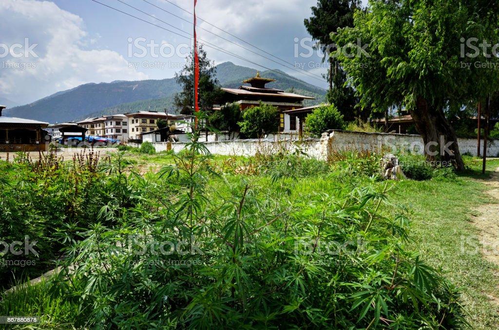 Temple Building in Bhutan stock photo