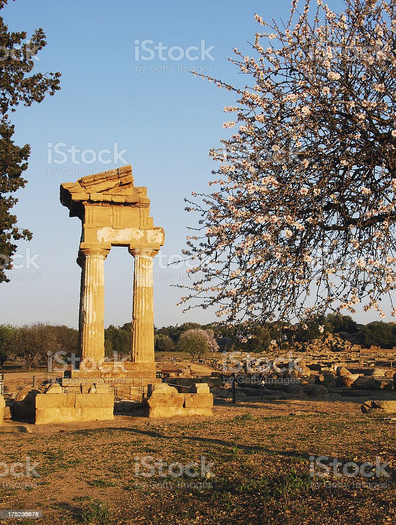 Temple of Castor and Pollux royalty-free stock photo