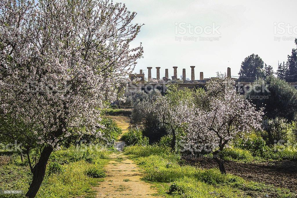 Il tempio di Ercole - foto stock