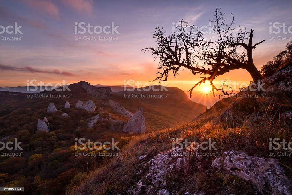 Temple of the sun (or Devil's fingers) stock photo