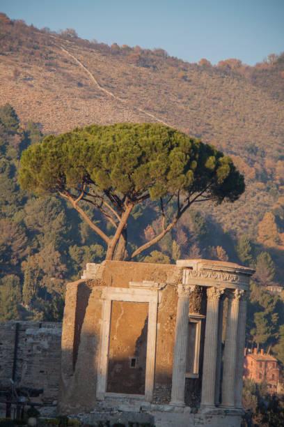temple of vesta in tivoli, ruins. - batalina italy стоковые фото и изображения