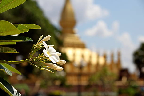 Temple Pha That Luang in Vientiane stock photo