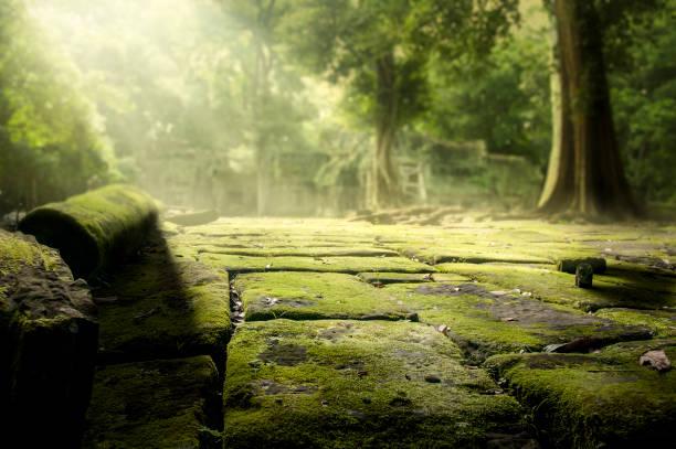 カンボジアのアンコール ワットの近くのジャングルの寺院遺跡 - 遺跡 ストックフォトと画像