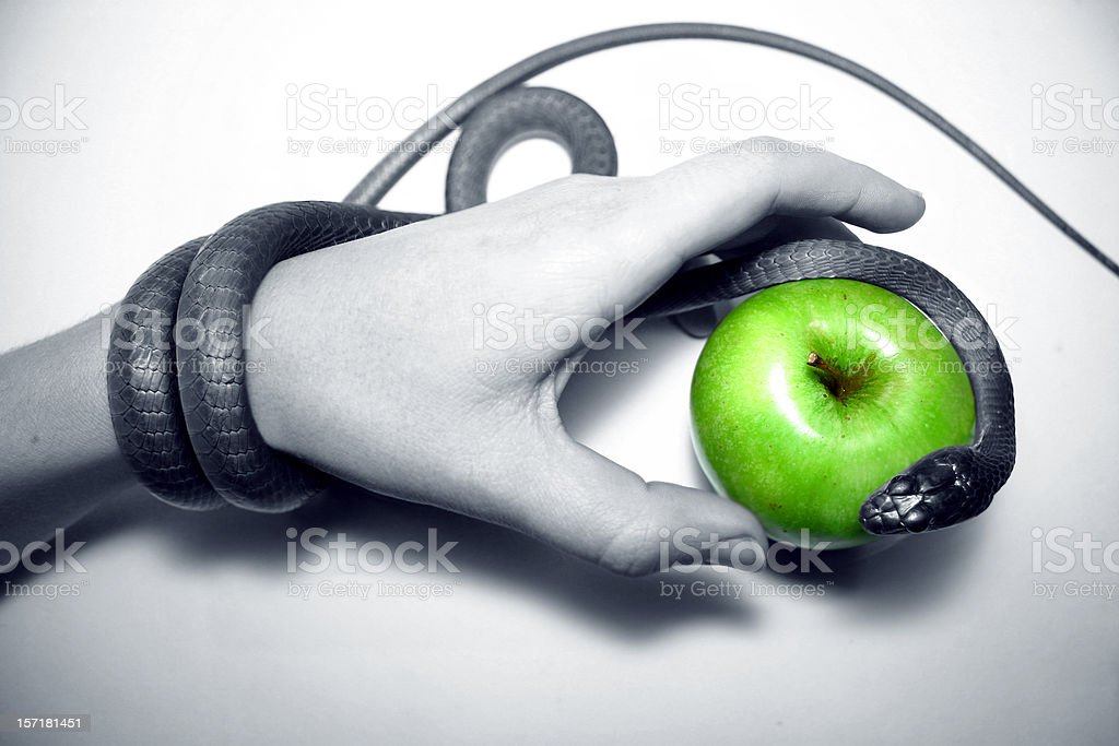 temptation snake hand taking green apple stock photo