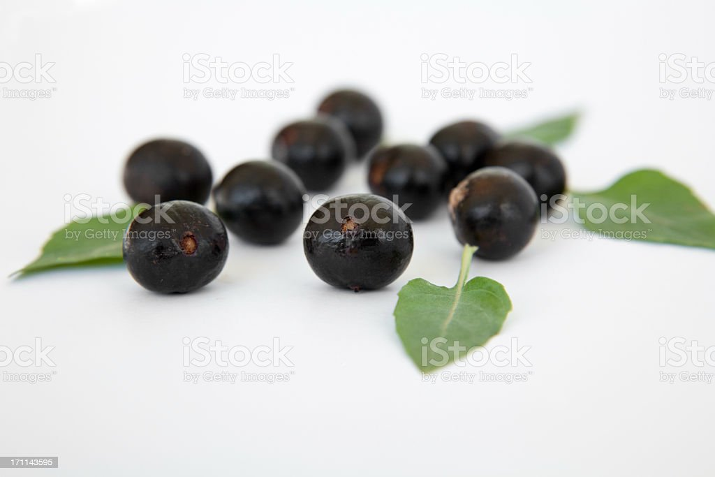 Ten acai berries with green leaves  royalty-free stock photo