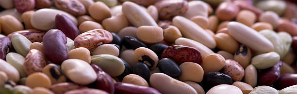 Ten Bean Mix stock photo