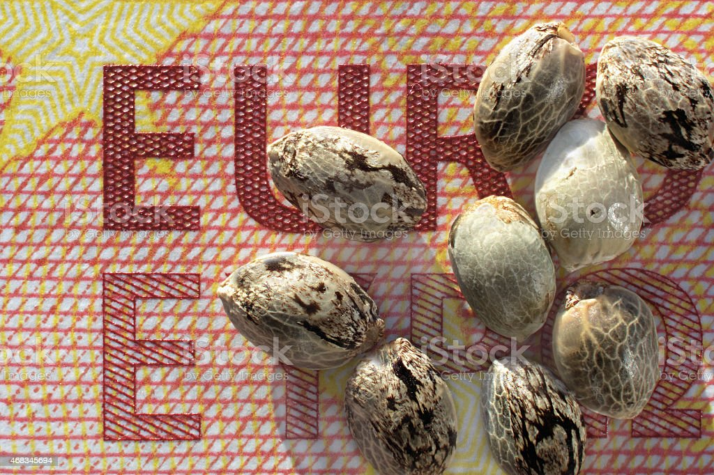 Ten euro banknote and hemp seeds royalty-free stock photo