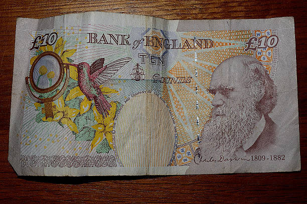 ten pound note British currency / money ten pound note stock pictures, royalty-free photos & images