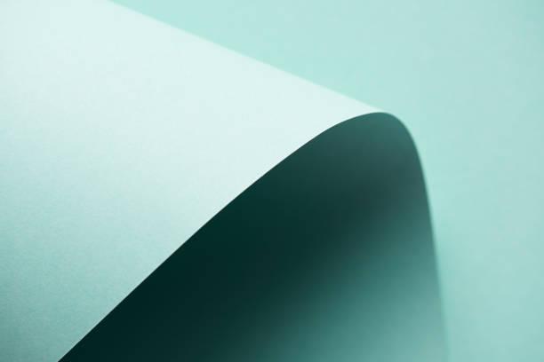 Color tierno de hoja - foto de stock