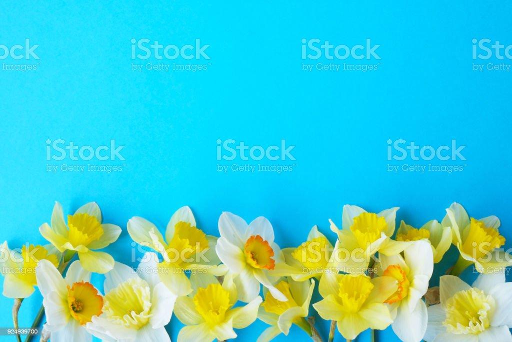 Photo Libre De Droit De Composition De Fleurs Tendres Printemps Minimaliste Sur La Surface De Texture Decoration De Belle Plante Feminine Pour Carte
