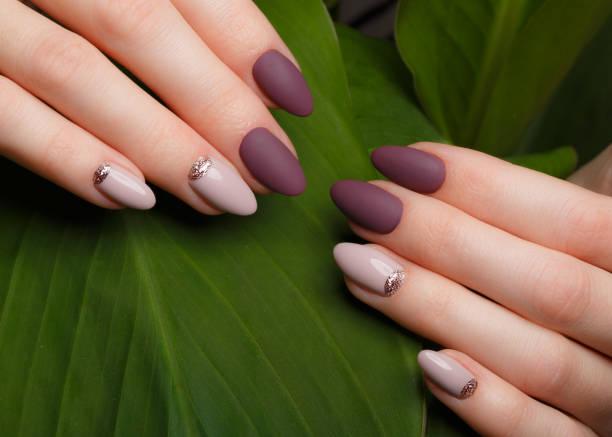 concurso manicura pura na fêmea as mãos no fundo de folhas verdes. design de unha - manicure - fotografias e filmes do acervo