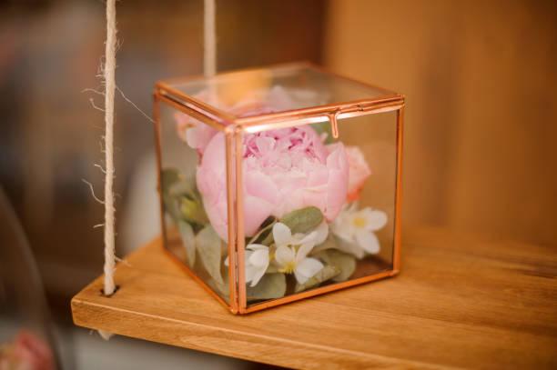 zart rosa pfingstrose blume im terrarium - jasmin party stock-fotos und bilder