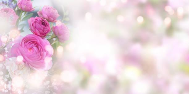 Tender pink roses background picture id1125638717?b=1&k=6&m=1125638717&s=612x612&w=0&h=zzrjo4oaqjjsjwpqy4om2b41jt o68vbjoww1olwtec=