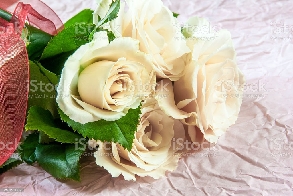Tenderly pink roses photo libre de droits