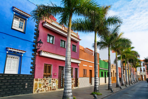 tenerife. colourful houses and palm trees on street in puerto de la cruz town, tenerife, canary islands, spain - venezuela stock photos and pictures