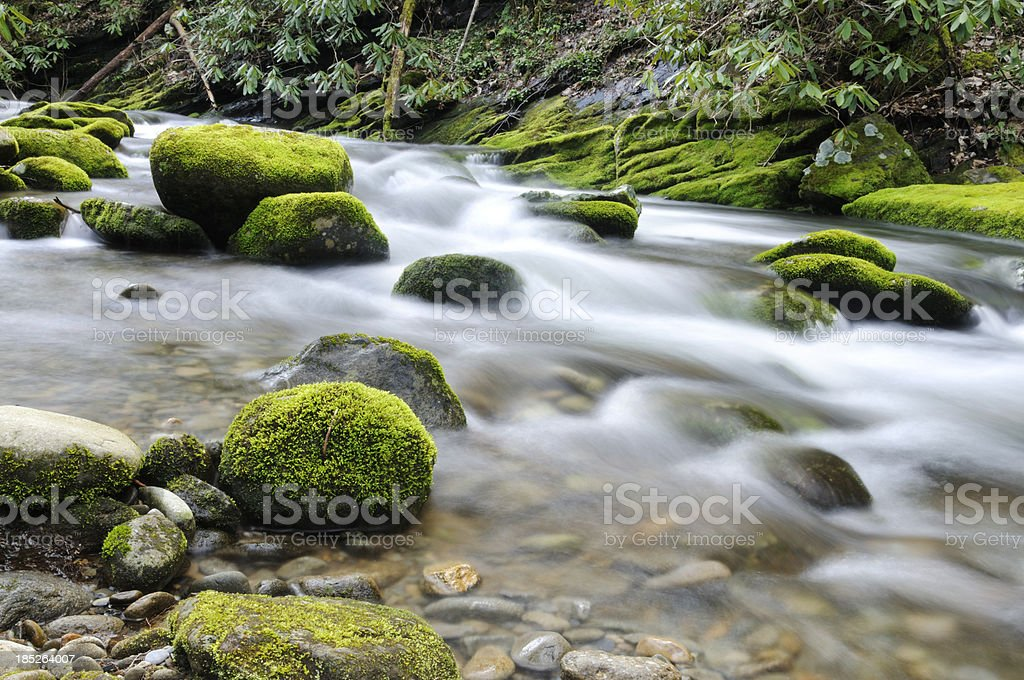 Tennessee Rapids royalty-free stock photo