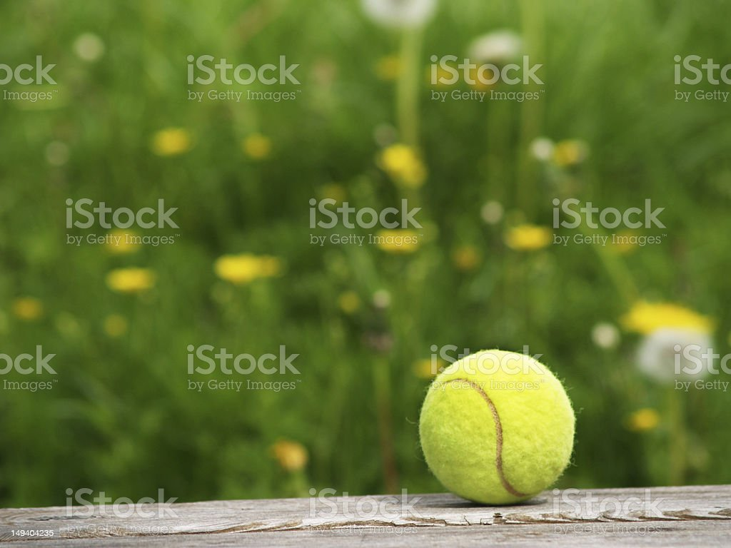 tennis ball and meadow royalty-free stock photo