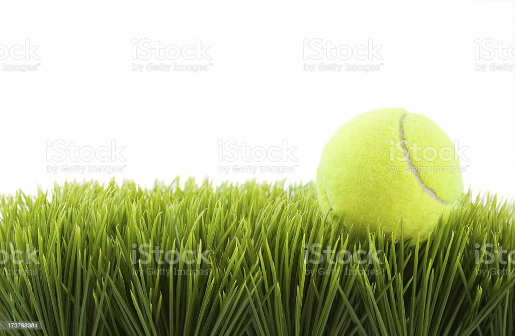 Tennis ball on grass royalty-free stock photo