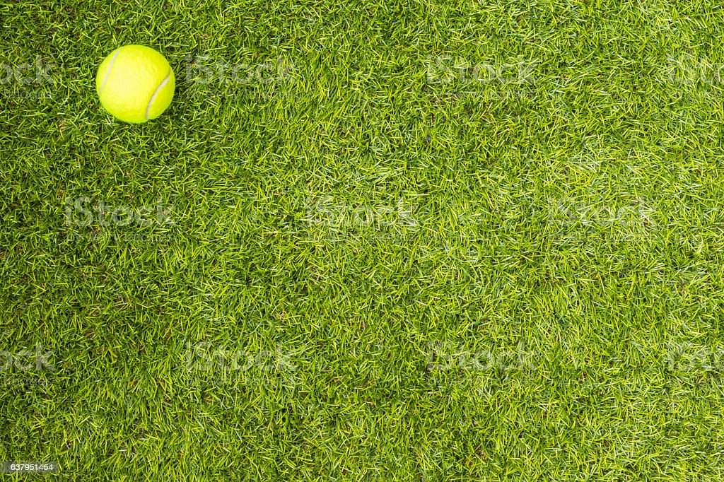 Tennis ball on green grass stock photo
