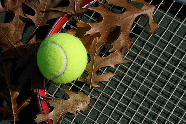 642 Tennis Fall Stock Photos, Pictures & Royalty-Free Images - iStock