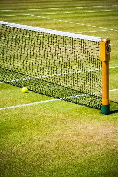 Tennis net and ball on grass court stock photo