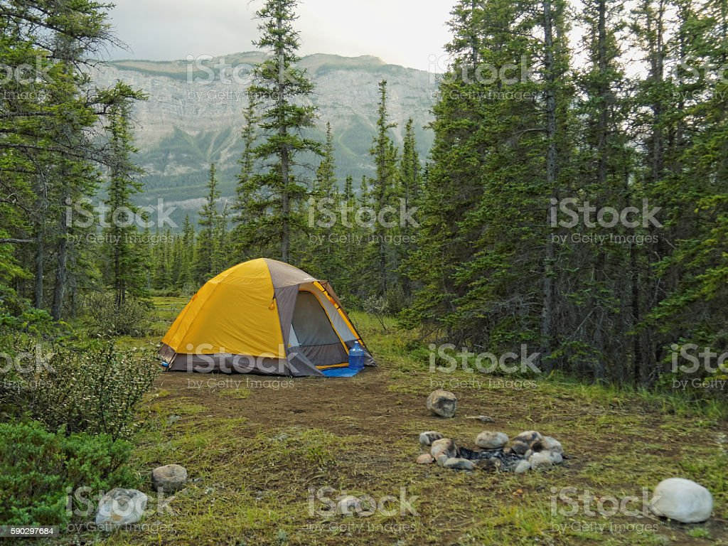 Tent Camping in the Forest with Mountain Backdrop royaltyfri bildbanksbilder