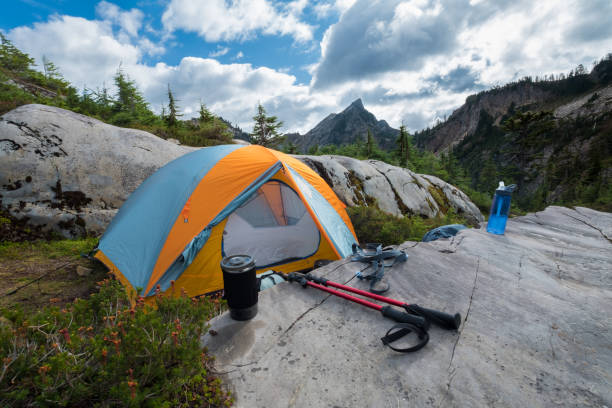 Tent camping in the mountains with conifer trees stock photo