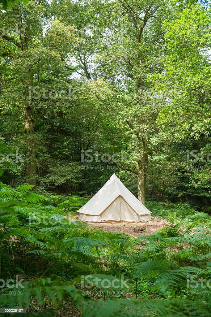 Tent in a wood stock photo
