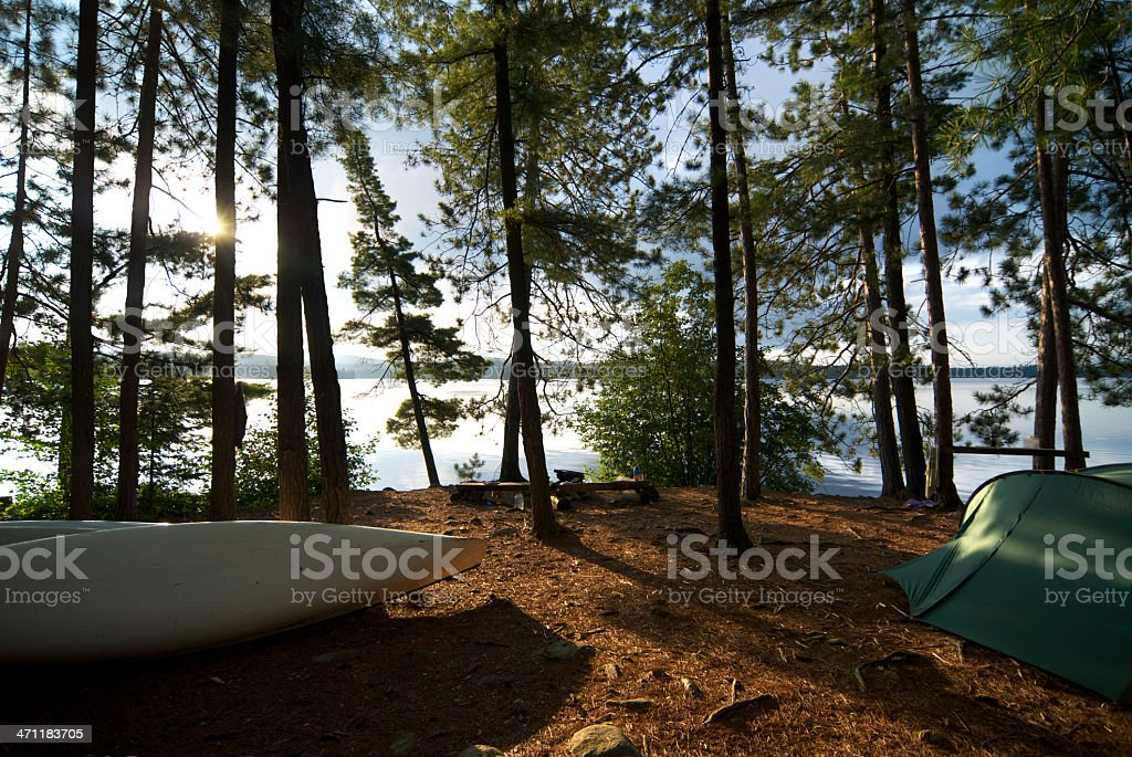Tent In The Forest During A Summer Camp stock photo