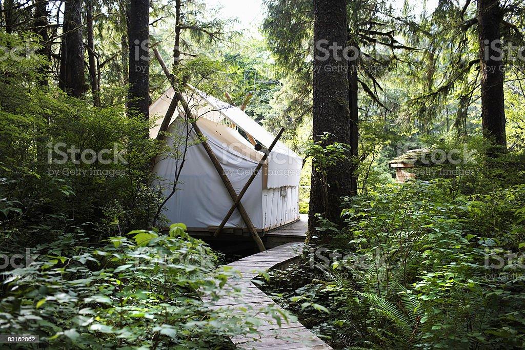 Tenda nella foresta. foto stock royalty-free