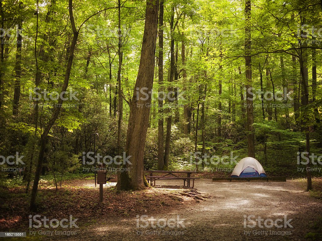 tent in the woods stock photo