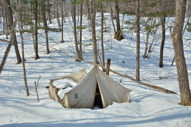 tent in winter forest - planenzelt stock-fotos und bilder