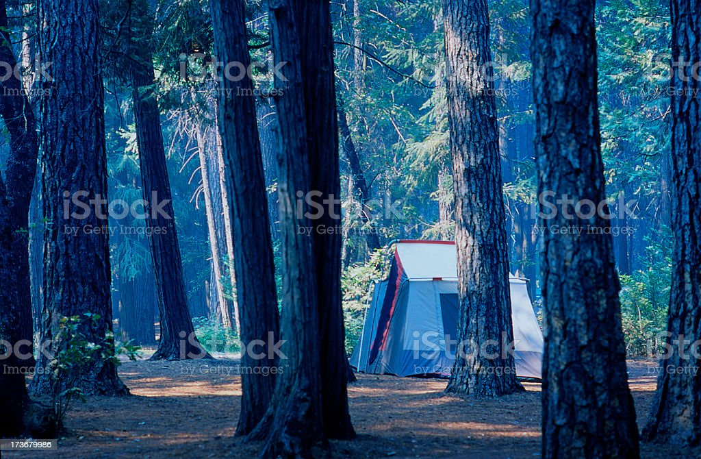 Tent in Woods 2 royalty-free stock photo