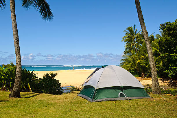 Camping beside beach stock photo
