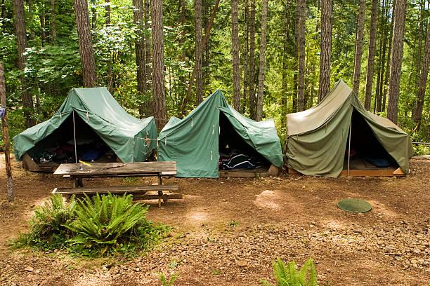tiendas en boy scout camp - boy scout fotografías e imágenes de stock